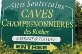 2017-caves-bourrc3a90001