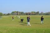 golf-_17